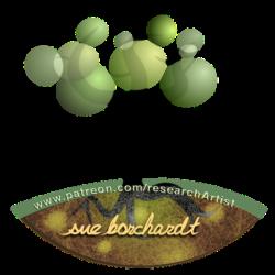 sue borchardt – research artist